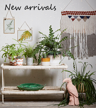 Shop new arrivals from Holly's House
